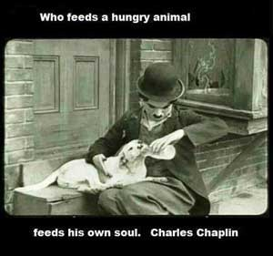 charles chaplin dog quote
